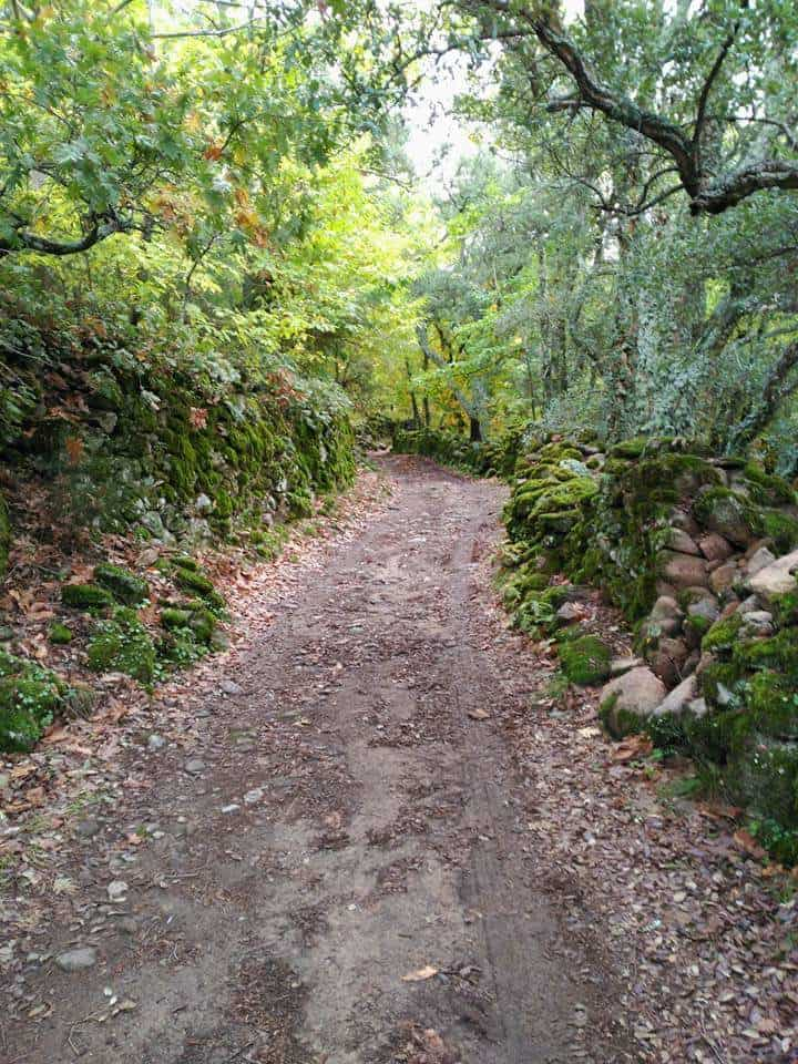 rutas senderistas circuito extremeño